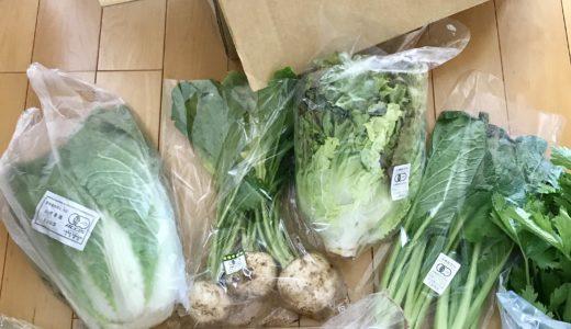 パルシステム有機野菜お試しセットの感想レビュー@1000円でした!