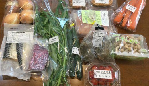 オイシックス「野菜が主役の3daysベジごはん」をレビュー!満足感は?